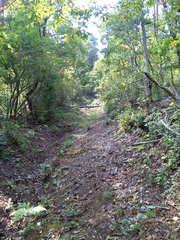 山の中の通学路